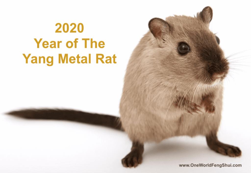 Year of the Yang Metal Rat
