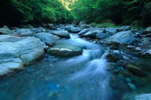 Water Element - Creek