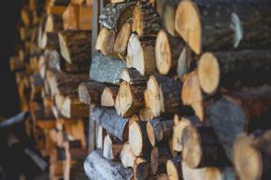 Wood Element - Logs