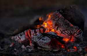 Fire Element - Burning Logs