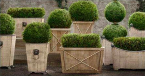 Earth Element - Planters.