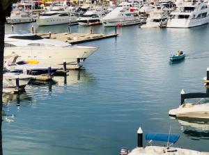 Water Element - Harbor.
